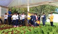Estudo sobre hortas leva alunos ao IMEAB