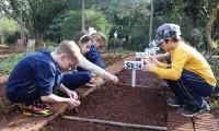A horta dos alunos