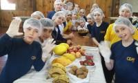 Alimentação e Digestão na pauta do 4º ano