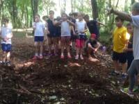 Estudando os diferentes tipos de solo