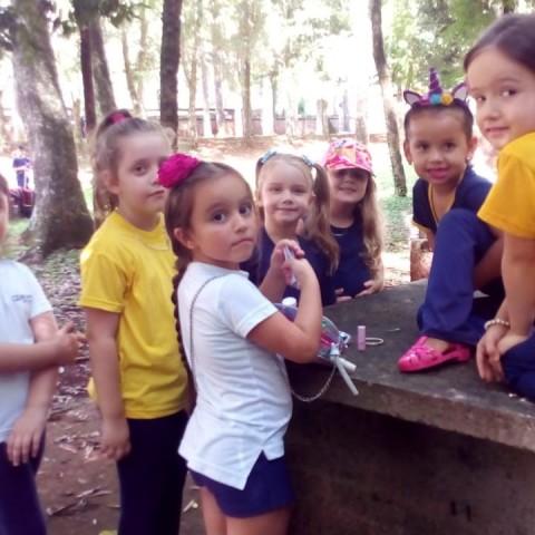 22.03.2019 - CEAPzinho - Nível 5 - Atividades no Campo